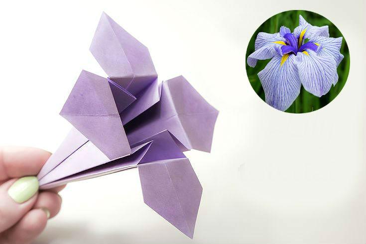 Классическая модель цветка 7