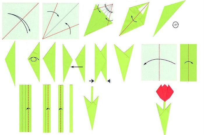 Схма сборки тюльпана