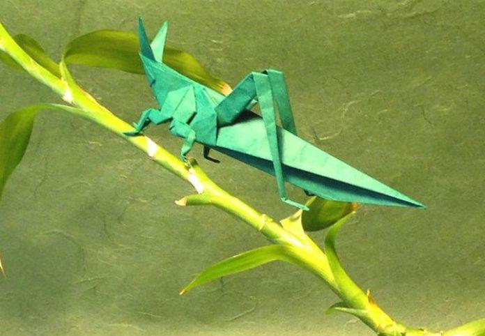 Оригами кузнечик