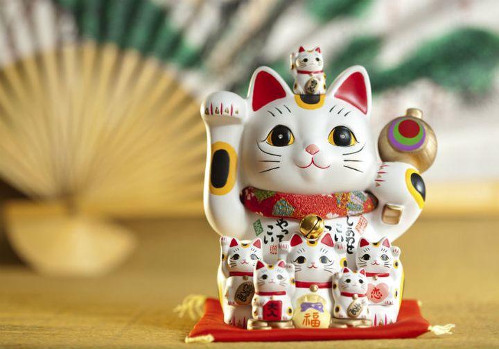 Японская кошка