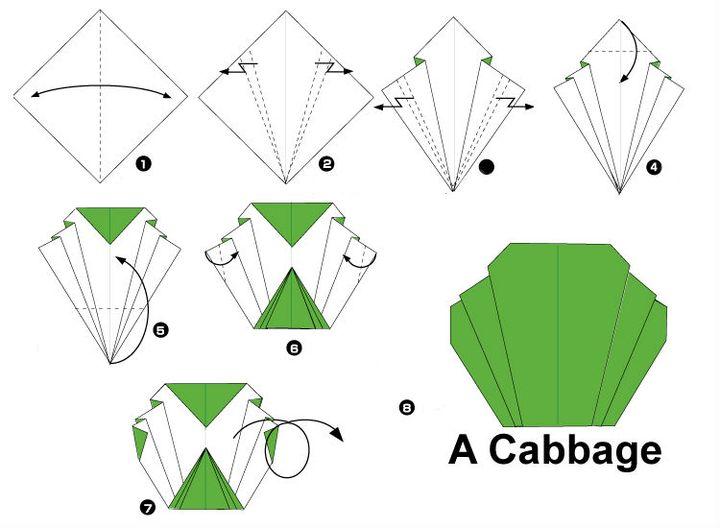 Сборка оригами-капусты