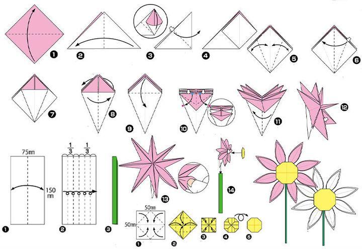 Поэтапная сборка  оригами-ромашки для детей