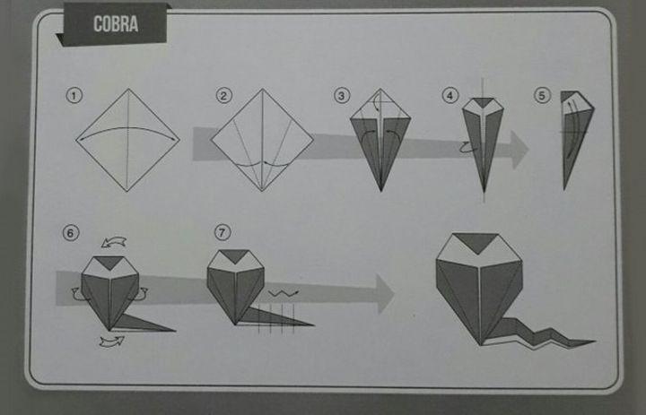 Схема кобры-оригами